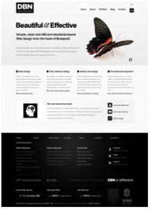 DBN Website Design