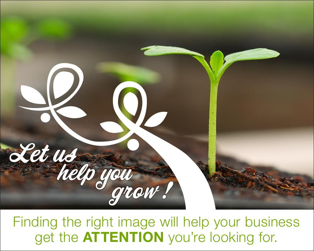 Let us help you grow | Finding the right image | Midwest digital Marketing